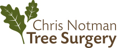 CNTrees-Oak Logo-229x95